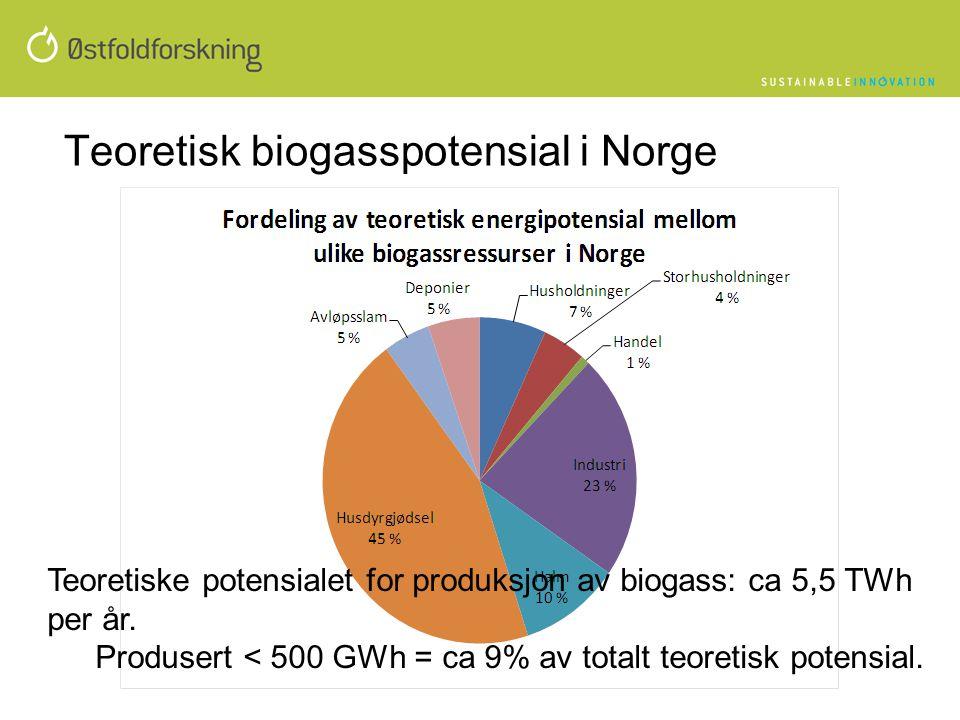 Teoretisk biogasspotensial i Norge Teoretiske potensialet for produksjon av biogass: ca 5,5 TWh per år. Produsert < 500 GWh = ca 9% av totalt teoretis