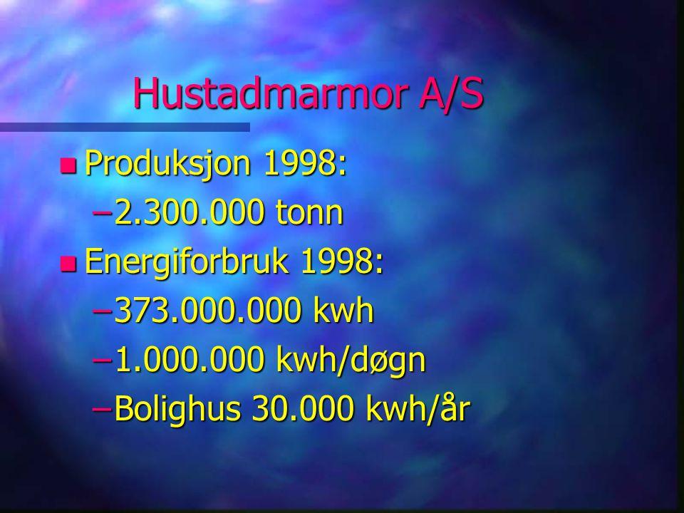 Hustadmarmor A/S n Produksjon 1998: –2.300.000 tonn n Energiforbruk 1998: –373.000.000 kwh –1.000.000 kwh/døgn –Bolighus 30.000 kwh/år