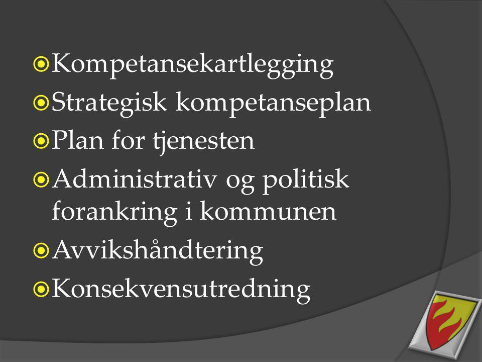  Kompetansekartlegging  Strategisk kompetanseplan  Plan for tjenesten  Administrativ og politisk forankring i kommunen  Avvikshåndtering  Konsek