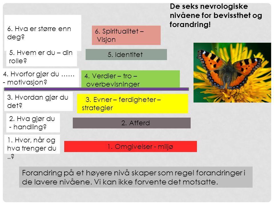 6.Spiritualitet – Visjon 5. Identitet 4. Verdier – tro – overbevisninger 3.