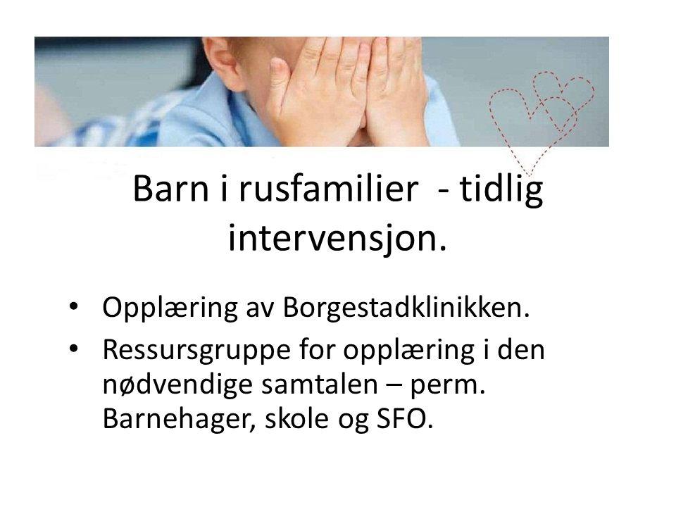 Barn i rusfamilier - tidlig intervensjon. • Opplæring av Borgestadklinikken. • Ressursgruppe for opplæring i den nødvendige samtalen – perm. Barnehage