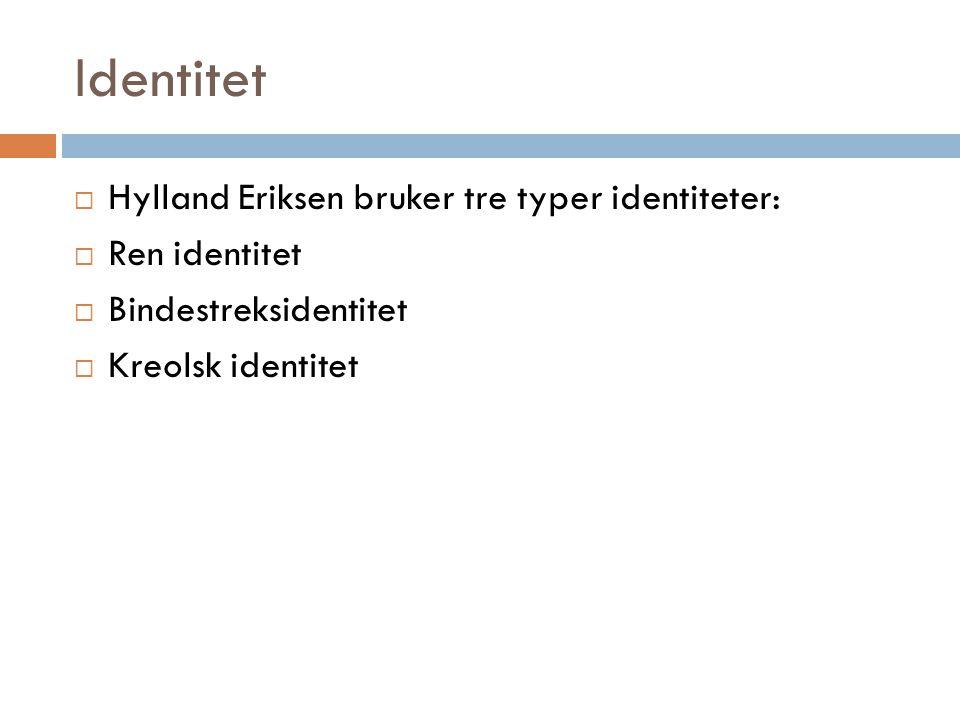 Identitet  Hylland Eriksen bruker tre typer identiteter:  Ren identitet  Bindestreksidentitet  Kreolsk identitet