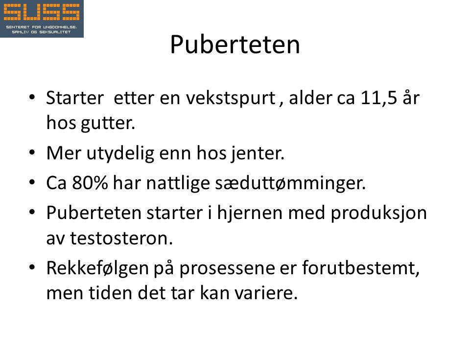 Puberteten • Starter etter en vekstspurt, alder ca 11,5 år hos gutter.