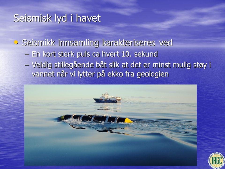 Seismisk lyd i havet • Seismikk innsamling karakteriseres ved –En kort sterk puls ca hvert 10. sekund –Veldig stillegående båt slik at det er minst mu