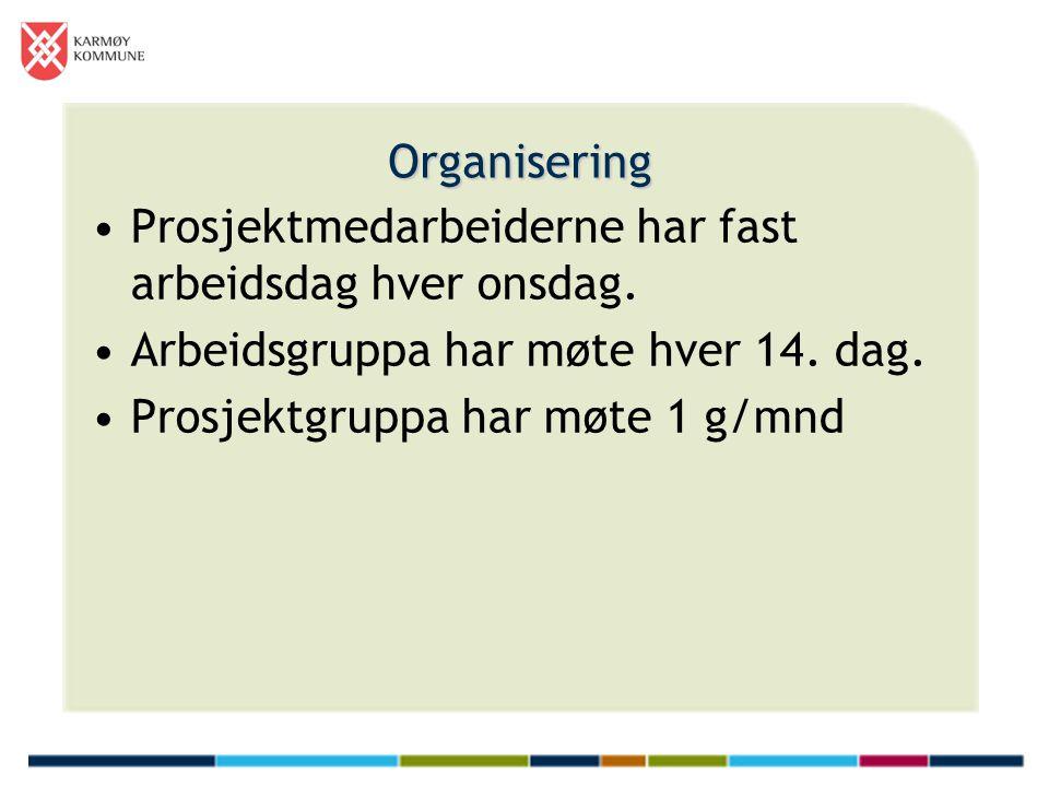 Organisering •Prosjektmedarbeiderne har fast arbeidsdag hver onsdag. •Arbeidsgruppa har møte hver 14. dag. •Prosjektgruppa har møte 1 g/mnd