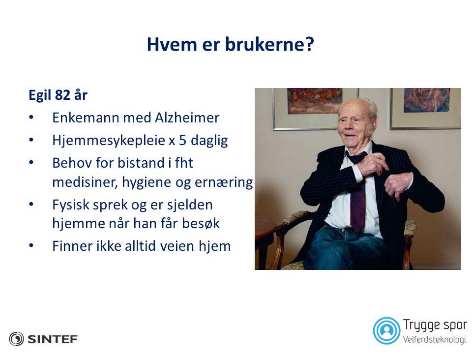 Hvem er brukerne? Egil 82 år • Enkemann med Alzheimer • Hjemmesykepleie x 5 daglig • Behov for bistand i fht medisiner, hygiene og ernæring • Fysisk s