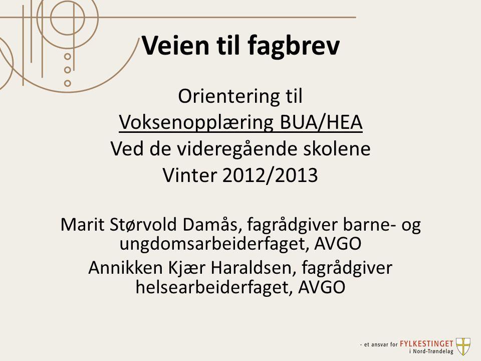 Veien til fagbrev Orientering til Voksenopplæring BUA/HEA Ved de videregående skolene Vinter 2012/2013 Marit Størvold Damås, fagrådgiver barne- og ung