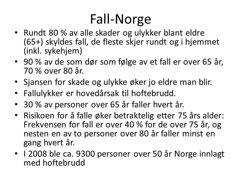 Fall-Norge • Rundt 80 % av alle skader og ulykker blant eldre (65+) skyldes fall, de fleste skjer rundt og i hjemmet (inkl. sykehjem) • 90 % av de som