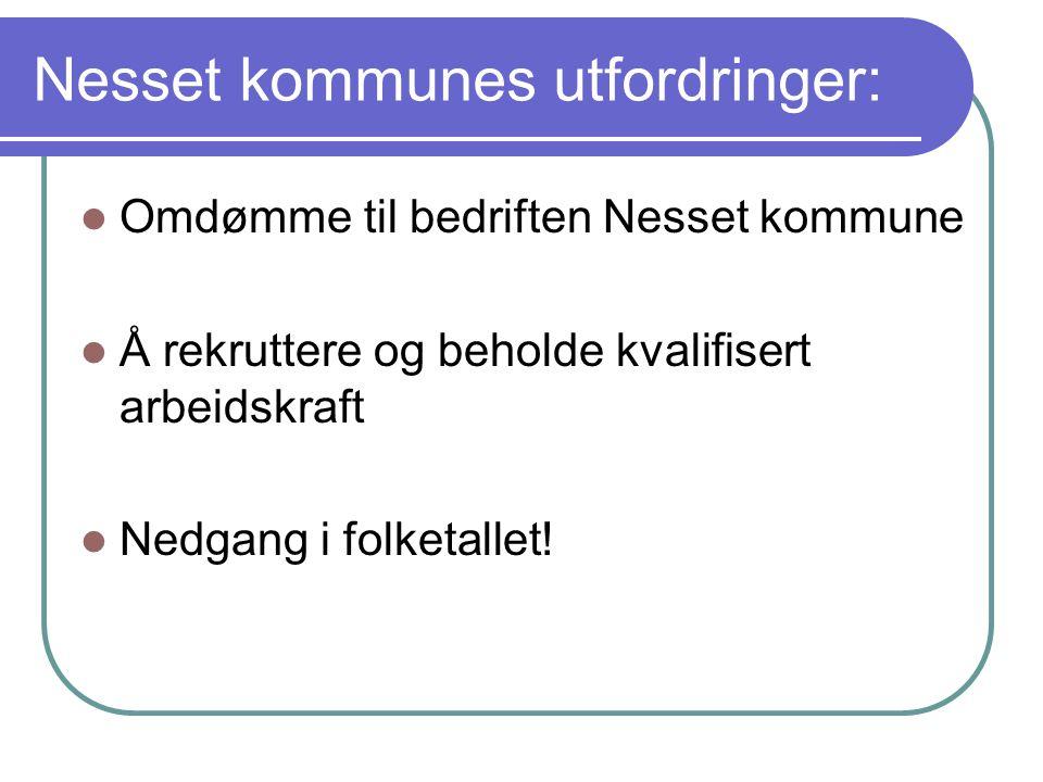 Nesset kommunes utfordringer:  Omdømme til bedriften Nesset kommune  Å rekruttere og beholde kvalifisert arbeidskraft  Nedgang i folketallet!