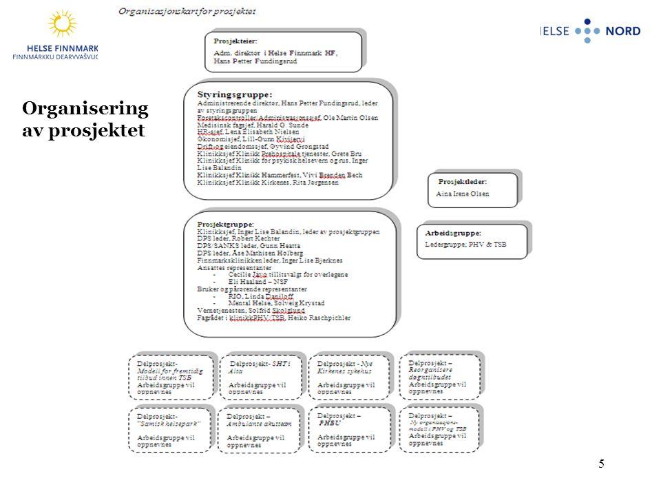 5 Organisering av prosjektet