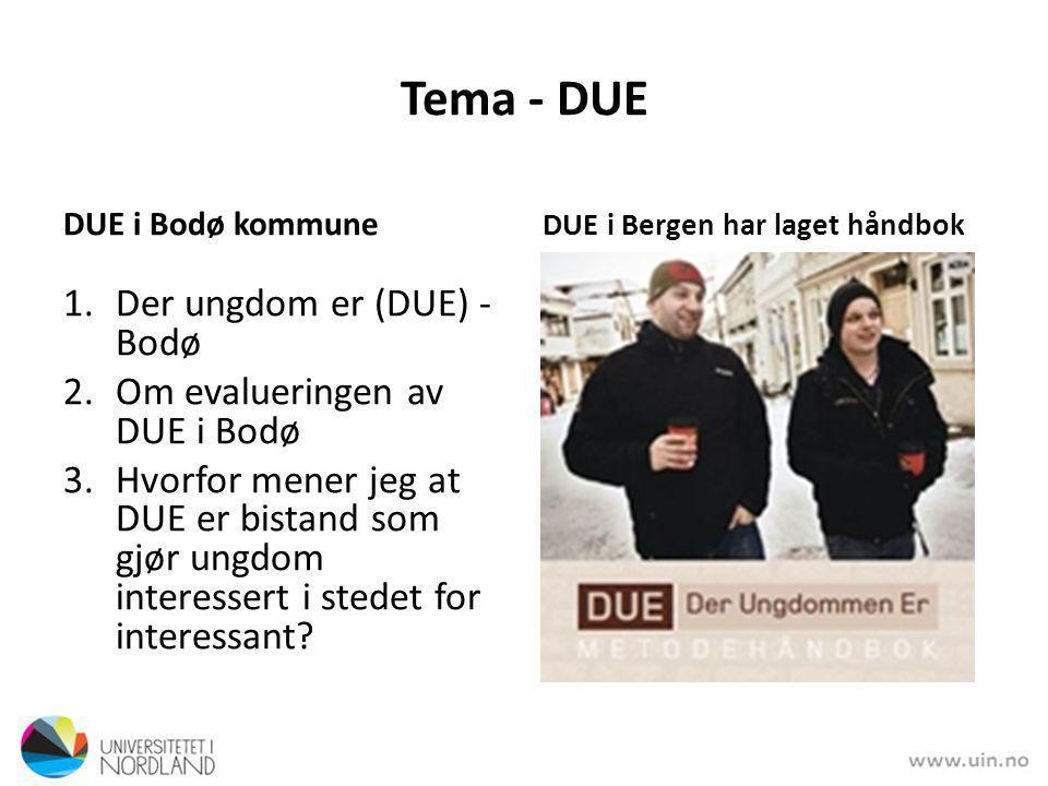 Tema - DUE DUE i Bodø kommune 1.Der ungdom er (DUE) - Bodø 2.Om evalueringen av DUE i Bodø 3.Hvorfor mener jeg at DUE er bistand som gjør ungdom interessert i stedet for interessant.