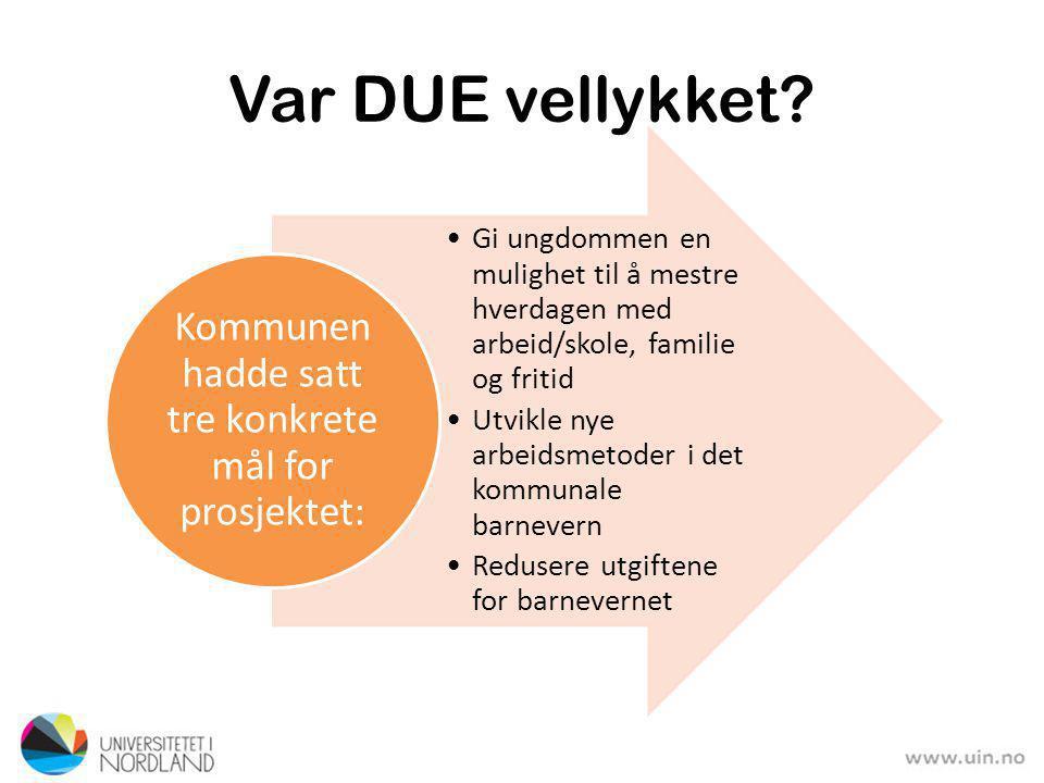 DUE ble … … bistand som stimulerte til personlig vekst og egenansvar for ungdommene … ikke bistand som druknet ungdommen i formaninger, råd og unyttig ansvarsovertakelse