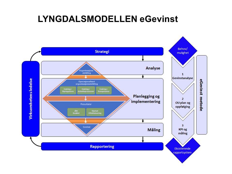 LYNGDALSMODELLEN eGevinst