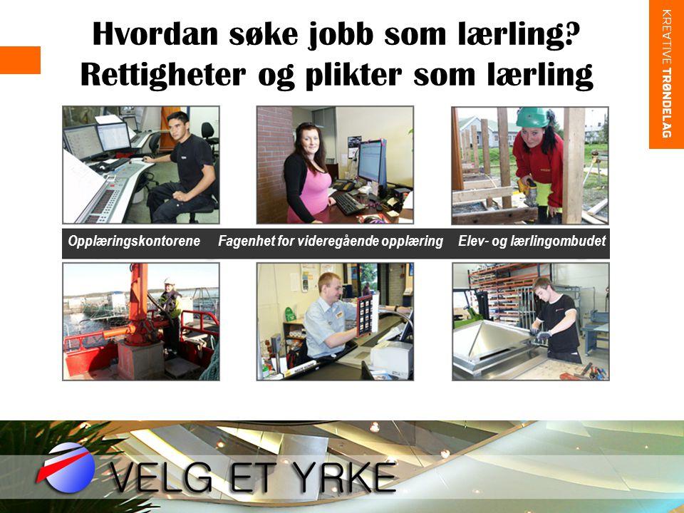 Hvordan søke jobb som lærling? Rettigheter og plikter som lærling • Opplæringskontorene Fagenhet for videregående opplæring Elev- og lærlingombudet