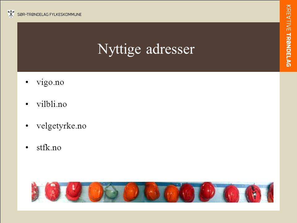 Nyttige adresser •vigo.no •vilbli.no •velgetyrke.no •stfk.no