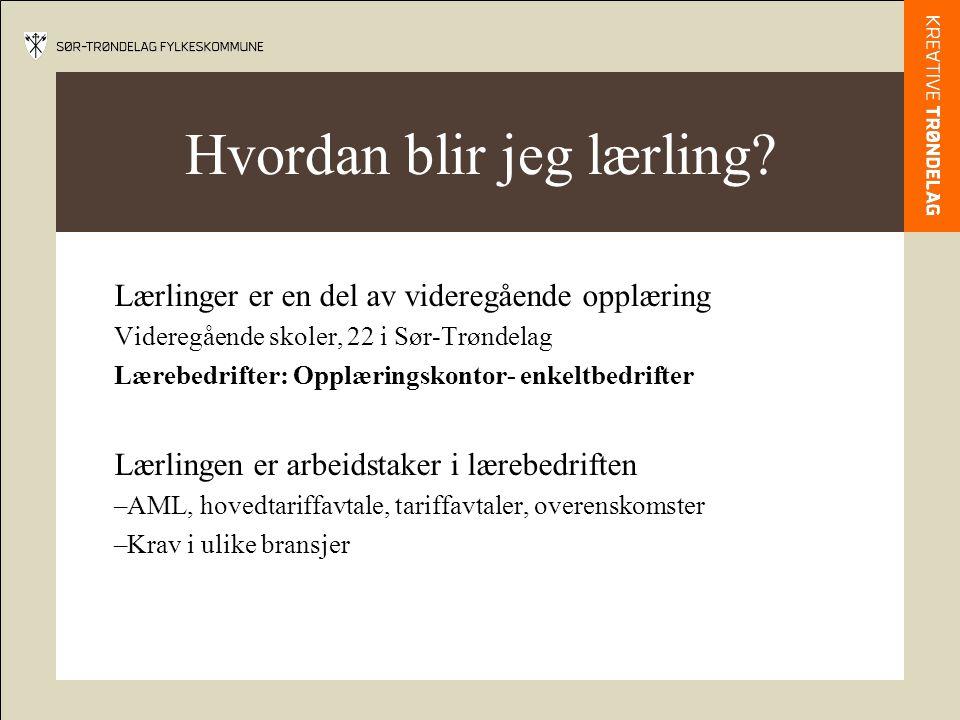 Hvordan blir jeg lærling? Lærlinger er en del av videregående opplæring Videregående skoler, 22 i Sør-Trøndelag Lærebedrifter: Opplæringskontor- enkel