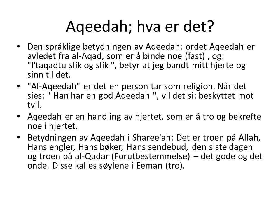 Aqeedah; hva er det? • Den språklige betydningen av Aqeedah: ordet Aqeedah er avledet fra al-Aqad, som er å binde noe (fast), og: