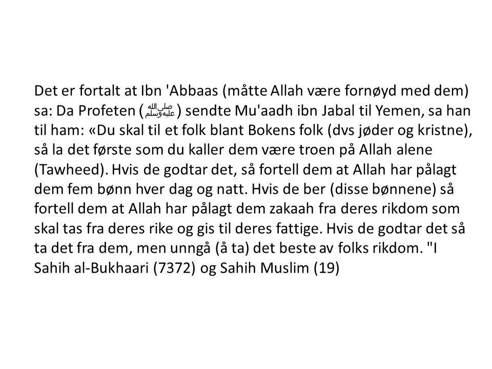 Det er fortalt at Ibn 'Abbaas (måtte Allah være fornøyd med dem) sa: Da Profeten ( ﷺ ) sendte Mu'aadh ibn Jabal til Yemen, sa han til ham: «Du skal ti