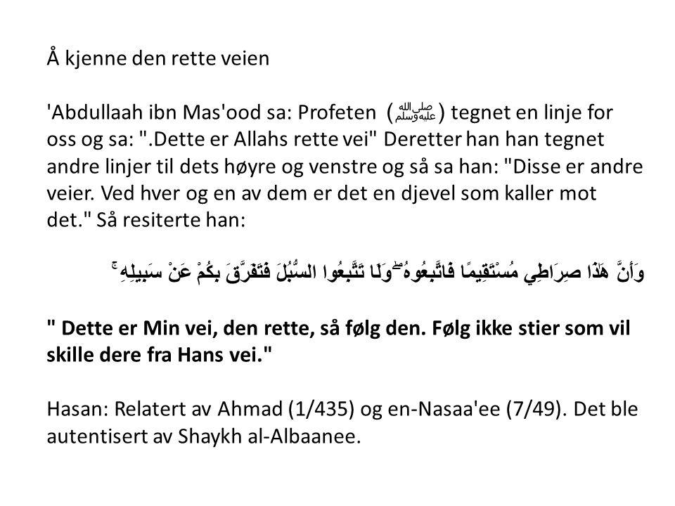 Å kjenne den rette veien 'Abdullaah ibn Mas'ood sa: Profeten ( ﷺ ) tegnet en linje for oss og sa: