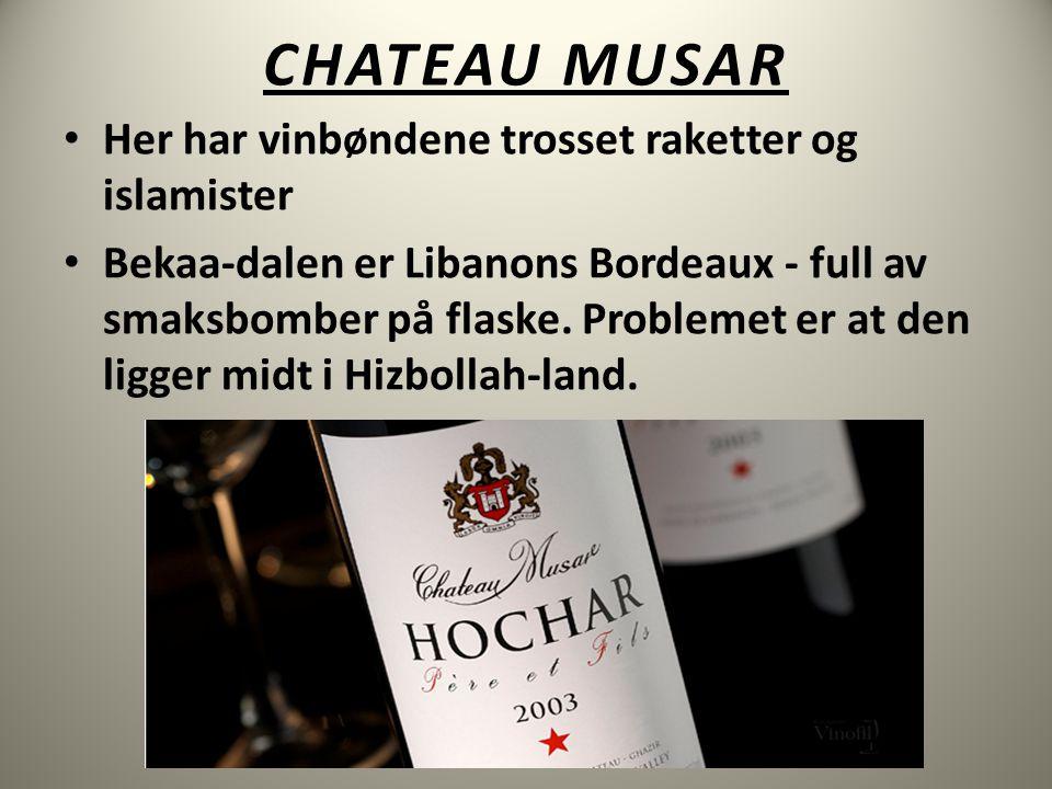 CHATEAU MUSAR • Her har vinbøndene trosset raketter og islamister • Bekaa-dalen er Libanons Bordeaux - full av smaksbomber på flaske.