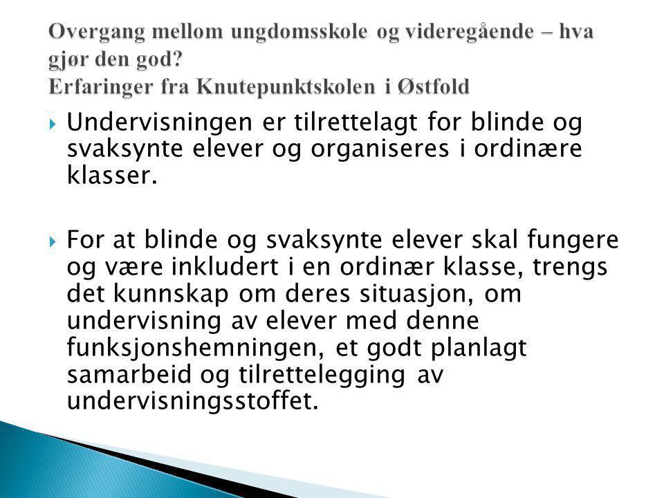  Undervisningen er tilrettelagt for blinde og svaksynte elever og organiseres i ordinære klasser.  For at blinde og svaksynte elever skal fungere og