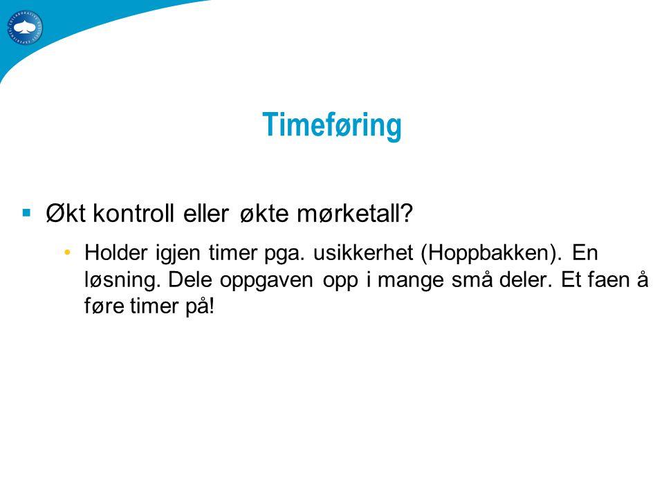 Timeføring  Økt kontroll eller økte mørketall. •Holder igjen timer pga.