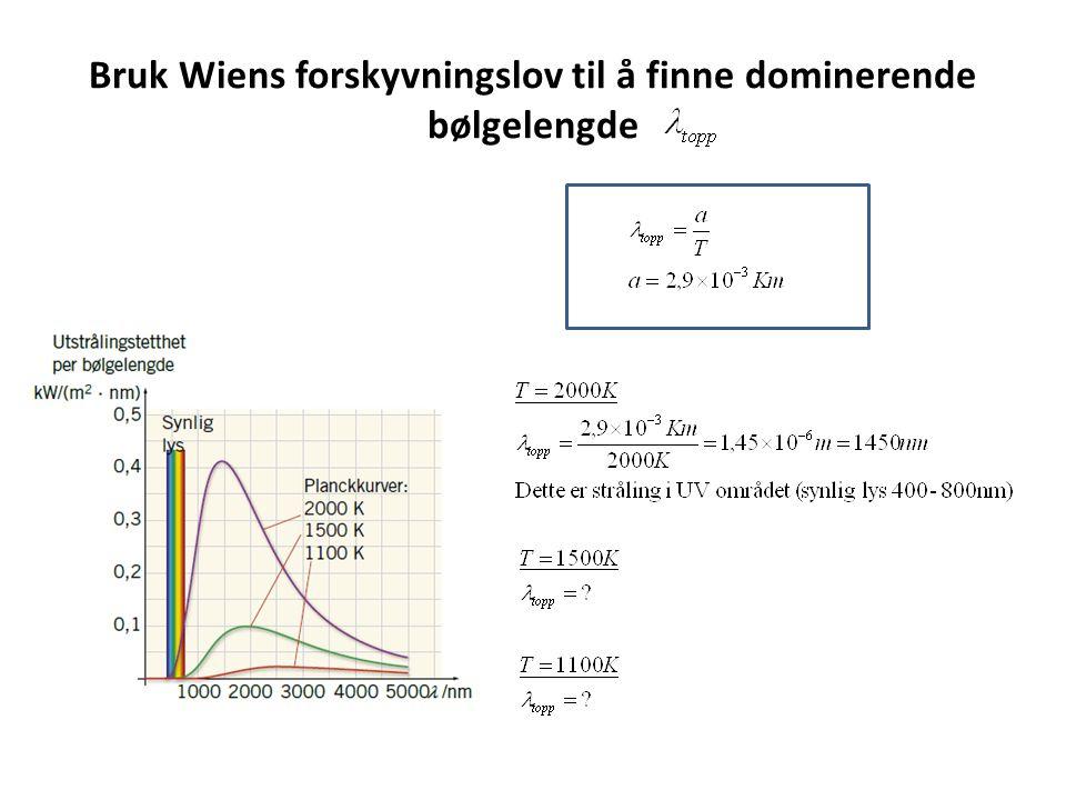 Bruk Wiens forskyvningslov til å finne dominerende bølgelengde