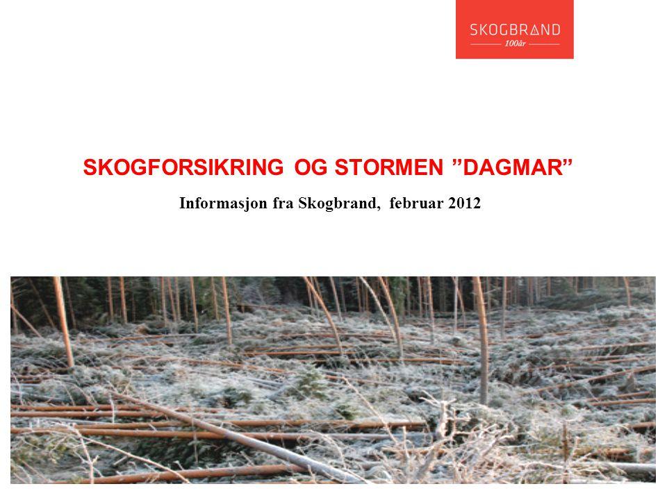 """SKOGFORSIKRING OG STORMEN """"DAGMAR"""" Informasjon fra Skogbrand, februar 2012"""