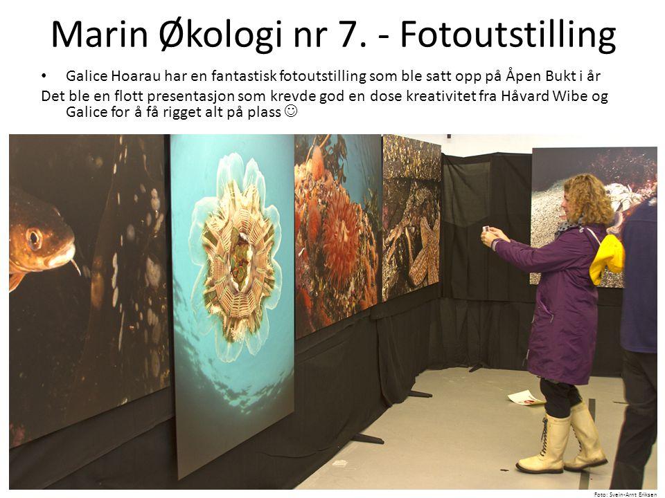 Marin Økologi nr 7. - Fotoutstilling • Galice Hoarau har en fantastisk fotoutstilling som ble satt opp på Åpen Bukt i år Det ble en flott presentasjon