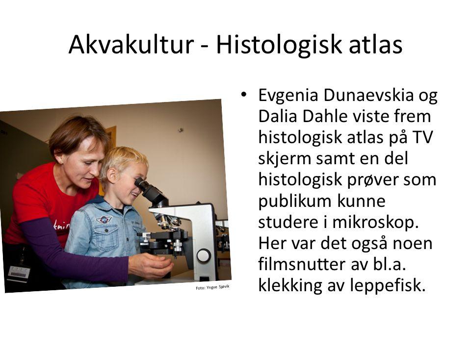 Akvakultur - Histologisk atlas • Evgenia Dunaevskia og Dalia Dahle viste frem histologisk atlas på TV skjerm samt en del histologisk prøver som publik