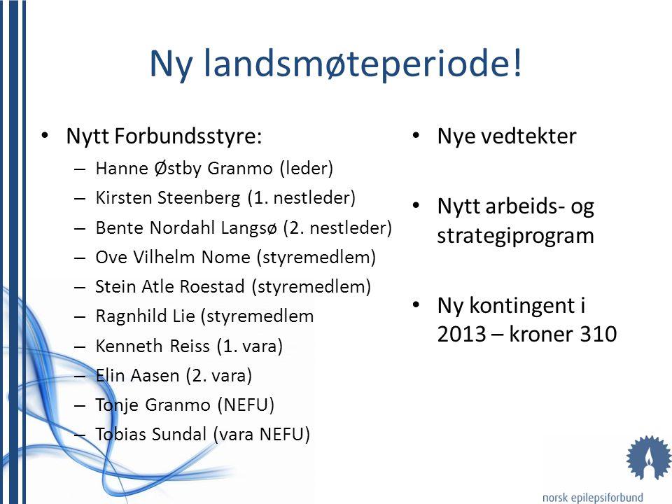 Administrasjonen i NEF • Henrik Peersen – Generalsekretær • Jørn Mandla Sibeko – Organisasjonskonsulent • Therese Ravatn – Interessepolitikk • Siw Enersen – Kontor- og regnskapskonsulent • Eva H.