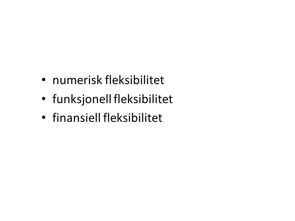 • numerisk fleksibilitet • funksjonell fleksibilitet • finansiell fleksibilitet