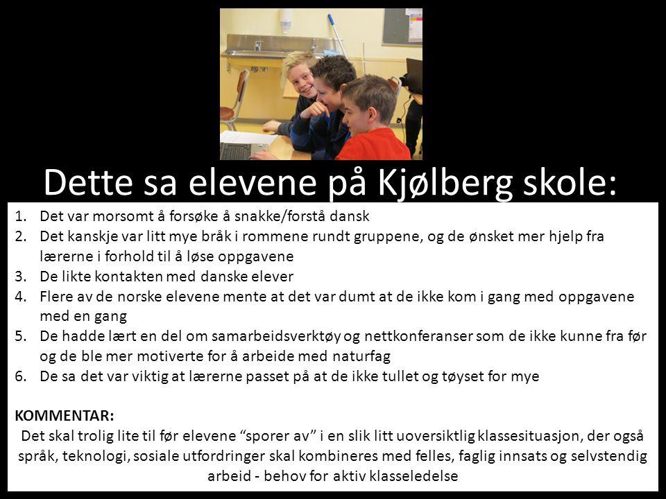 Dette sa elevene på Kjølberg skole: 1.Det var morsomt å forsøke å snakke/forstå dansk 2.Det kanskje var litt mye bråk i rommene rundt gruppene, og de