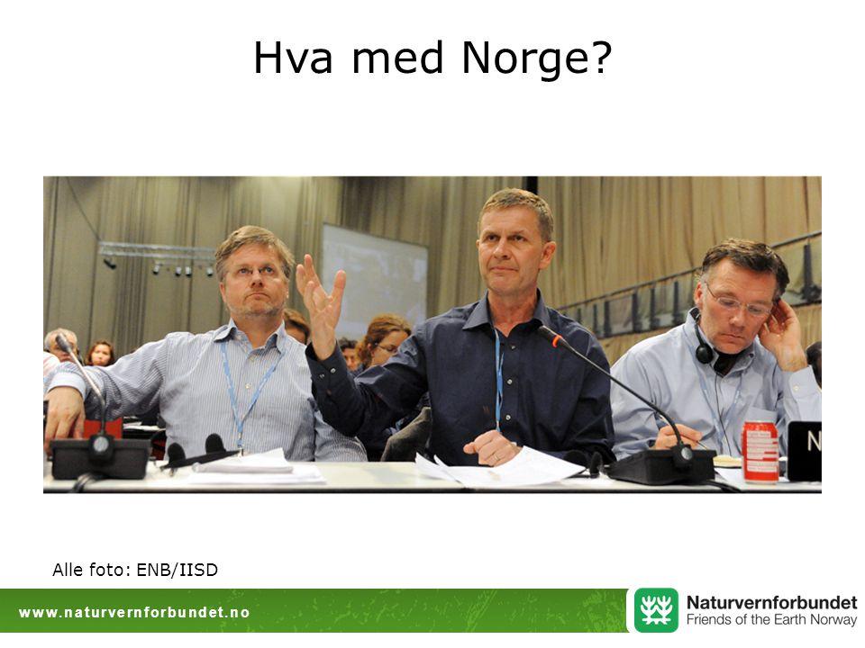 www.naturvernforbundet.no Hva med Norge? Alle foto: ENB/IISD