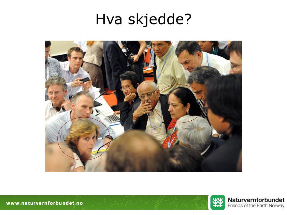 www.naturvernforbundet.no Hva skjedde?