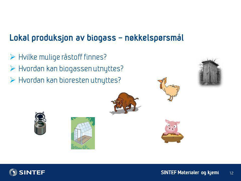 SINTEF Materialer og kjemi  Hvilke mulige råstoff finnes?  Hvordan kan biogassen utnyttes?  Hvordan kan bioresten utnyttes? 12 Lokal produksjon av