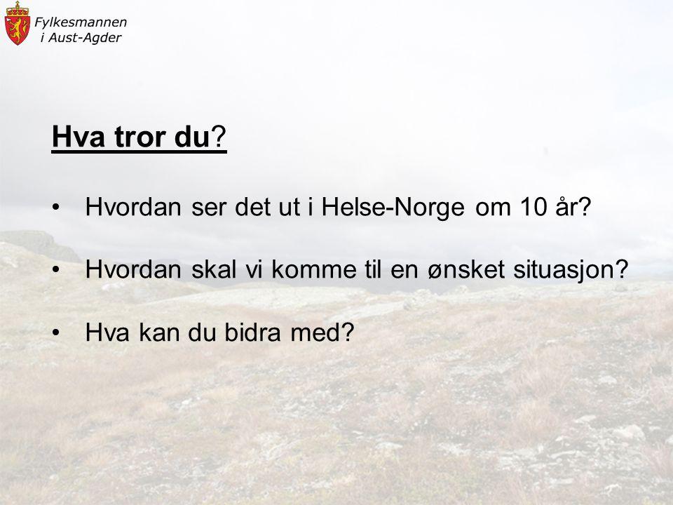 Hva tror du? •Hvordan ser det ut i Helse-Norge om 10 år? •Hvordan skal vi komme til en ønsket situasjon? •Hva kan du bidra med?