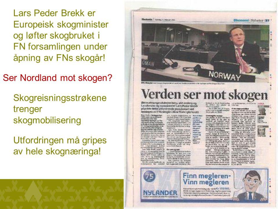 Lars Peder Brekk er Europeisk skogminister og løfter skogbruket i FN forsamlingen under åpning av FNs skogår.