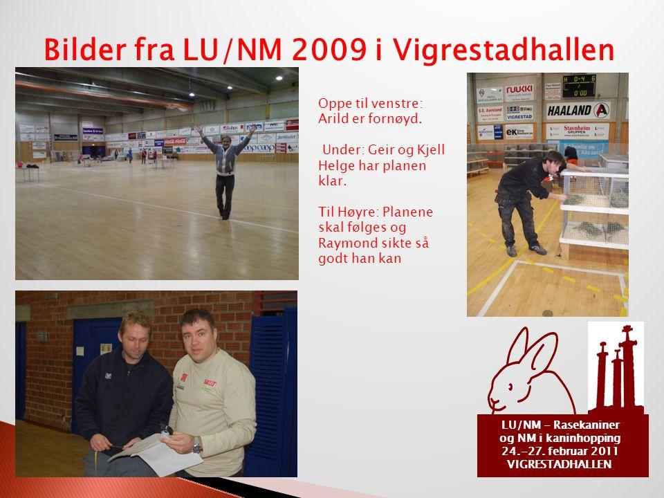 LU/NM - Rasekaniner og NM i kaninhopping 24.-27. februar 2011 VIGRESTADHALLEN Bilder fra LU/NM 2009 i Vigrestadhallen Oppe til venstre: Arild er fornø