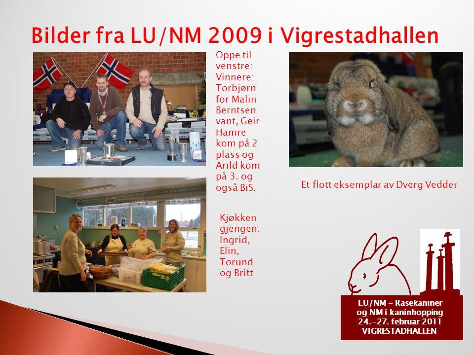 LU/NM - Rasekaniner og NM i kaninhopping 24.-27. februar 2011 VIGRESTADHALLEN Bilder fra LU/NM 2009 i Vigrestadhallen Oppe til venstre: Vinnere: Torbj