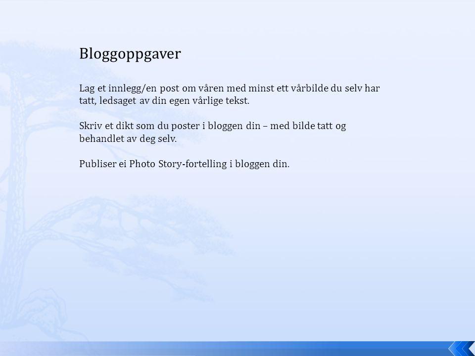 Bloggoppgaver Lag et innlegg/en post om våren med minst ett vårbilde du selv har tatt, ledsaget av din egen vårlige tekst.