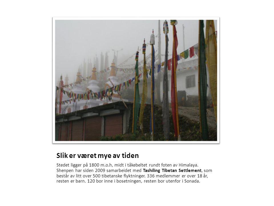 Kooperativet Det tibetanske kooperativet i Sonada er det eneste av sitt slag som tar seg av fremmede barn, det vil si barn som ikke hører til i kooperativet, men som kommer fra familier som arbeider som bønder i avsidesliggende strøk i Nord India.