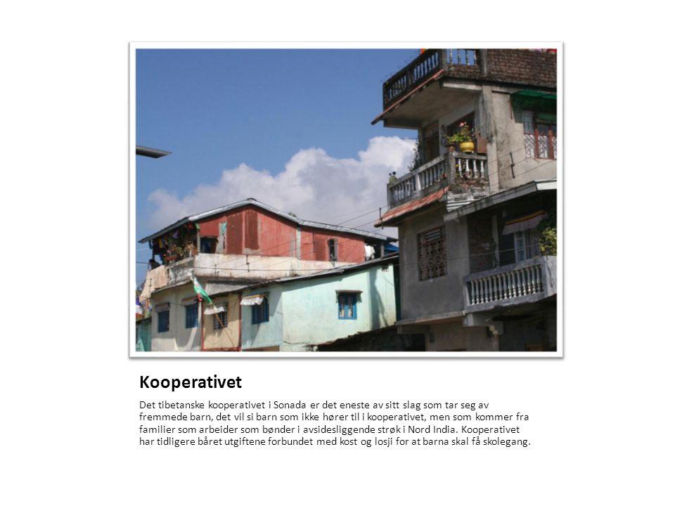 Utsikten over Sonada og omegn Du kan finne mer informasjon om oss på www.shenpen.no hvor det også går an å donere penger til prosjektet vårt.