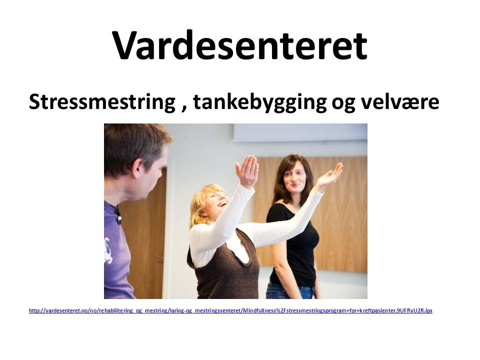 Vardesenteret Stressmestring, tankebygging og velvære http://vardesenteret.no/no/rehabilitering_og_mestring/laring-og_mestringssenteret/Mindfullness%2
