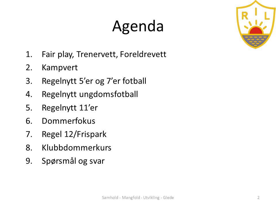 Regelendringer 2014 Barn- og ungdomsfotball Samhold - Mangfold - Utvikling - Glede13