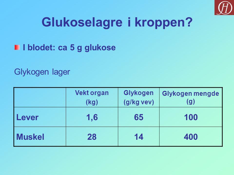 Glukoselagre i kroppen.