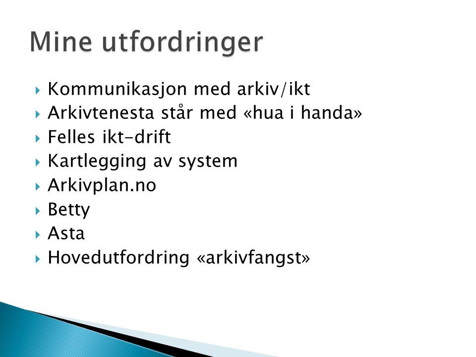  Kommunikasjon med arkiv/ikt  Arkivtenesta står med «hua i handa»  Felles ikt-drift  Kartlegging av system  Arkivplan.no  Betty  Asta  Hovedut