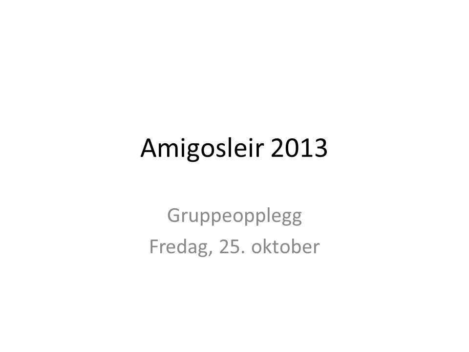 Amigosleir 2013 Gruppeopplegg Fredag, 25. oktober