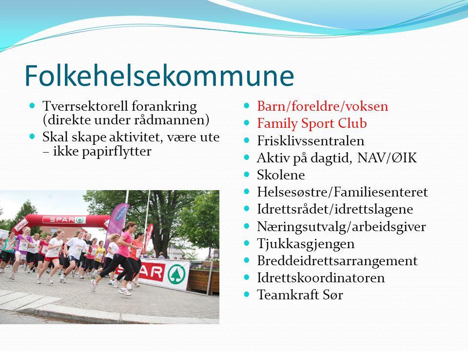 Folkehelsekommune  Tverrsektorell forankring (direkte under rådmannen)  Skal skape aktivitet, være ute – ikke papirflytter  Barn/foreldre/voksen 