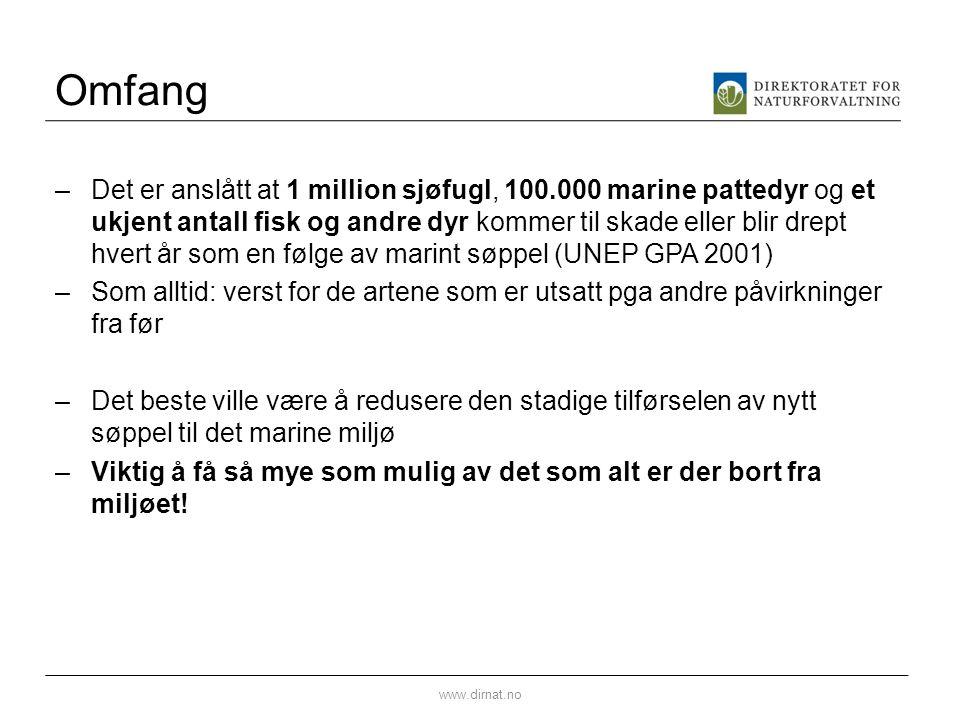 Omfang –Det er anslått at 1 million sjøfugl, 100.000 marine pattedyr og et ukjent antall fisk og andre dyr kommer til skade eller blir drept hvert år som en følge av marint søppel (UNEP GPA 2001) –Som alltid: verst for de artene som er utsatt pga andre påvirkninger fra før –Det beste ville være å redusere den stadige tilførselen av nytt søppel til det marine miljø –Viktig å få så mye som mulig av det som alt er der bort fra miljøet.